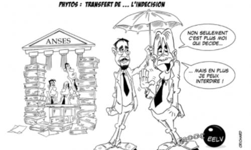 dessin-crichard-phytos-transfert-d-l-indecision-f778d