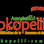 Descente dans l'enfer salarial de Kokopelli