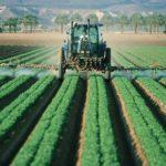 Pesticides : les faux chiffres de Mme Hilal Elver