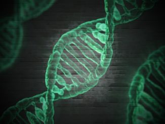 epigenetique ADN genetique