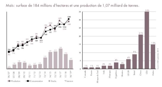 Maïs : surface de 184 millions d'hectares et une production de 1,07 milliards de tonnes